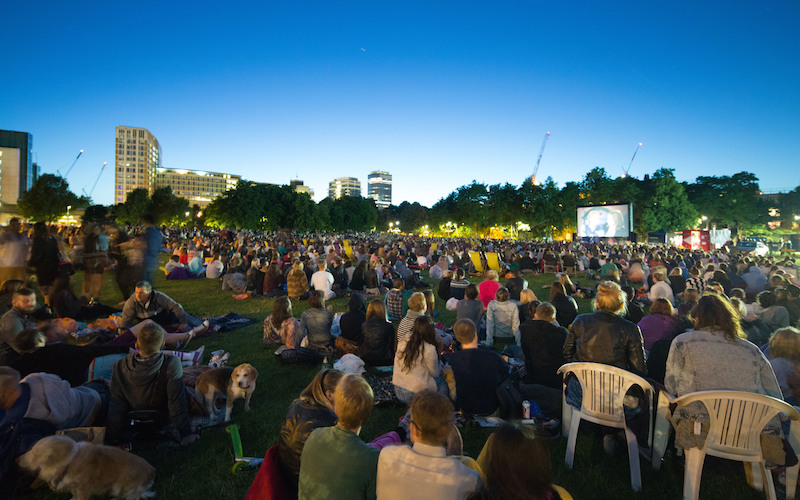 VAUXHALL SUMMER SCREEN