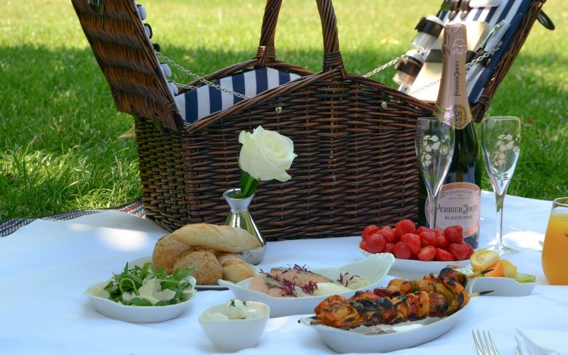 my memorable picnics