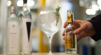 the gin journey goes south