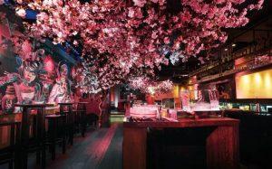 cherry blossom pop-up at roka
