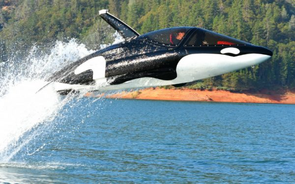 ride on the thames inside a killer whale